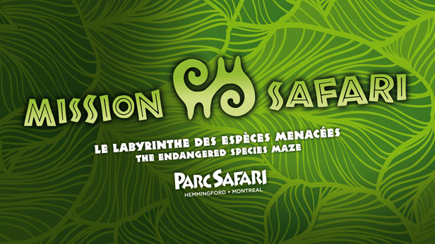 Mission Safari